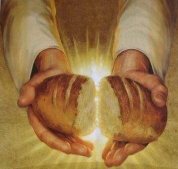 kruh-zivota